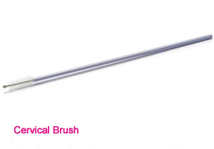Cervical brush